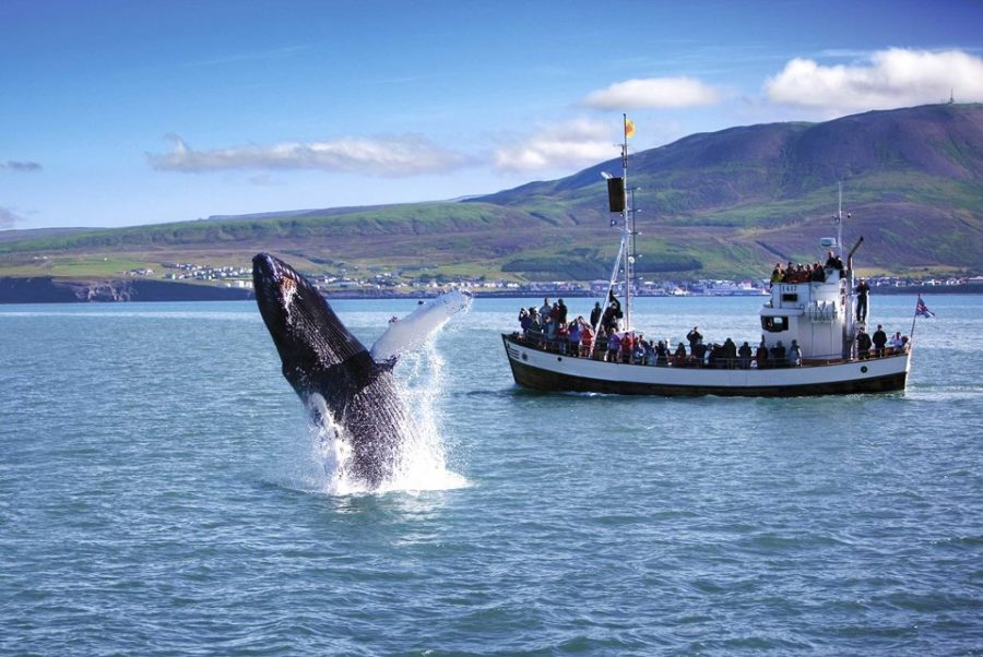 top places to visit in iceland 2019